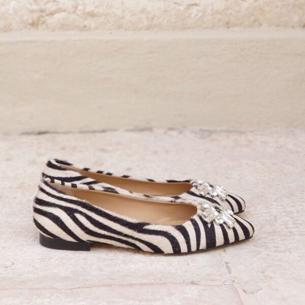 Flat zebra Chimar